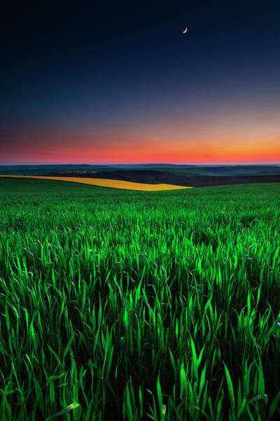 Photograph - Twilight Fields by Evgeni Dinev