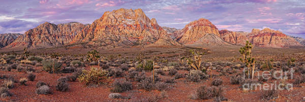 Wall Art - Photograph - Twilight Panorama Of Red Rock Canyon And Joshua Trees - Mojave Desert Las Vegas Nevada by Silvio Ligutti