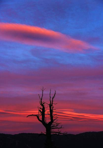 Photograph - Twilight Slingshot by Sean Sarsfield