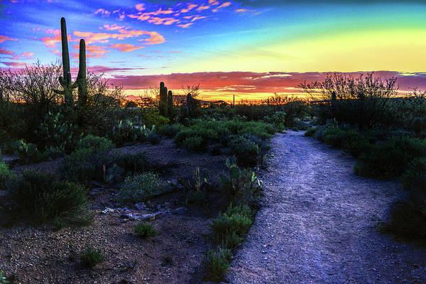 Photograph - Twilight Trail To Tucson by Chance Kafka
