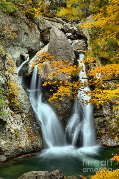 Photograph - Twin Falls At Bash Bish by Adam Jewell