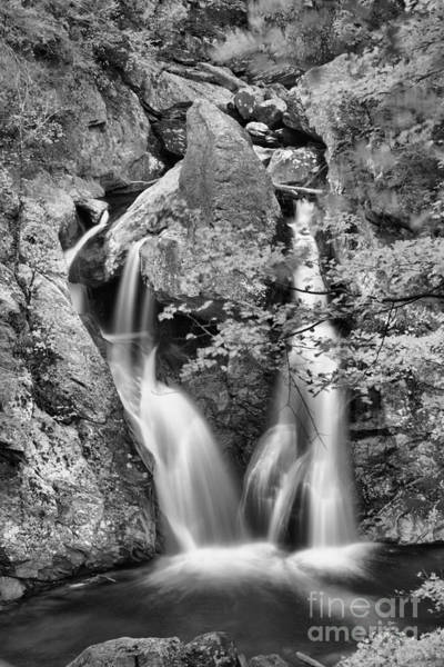Photograph - Twin Falls At Bash Bish Black And White by Adam Jewell