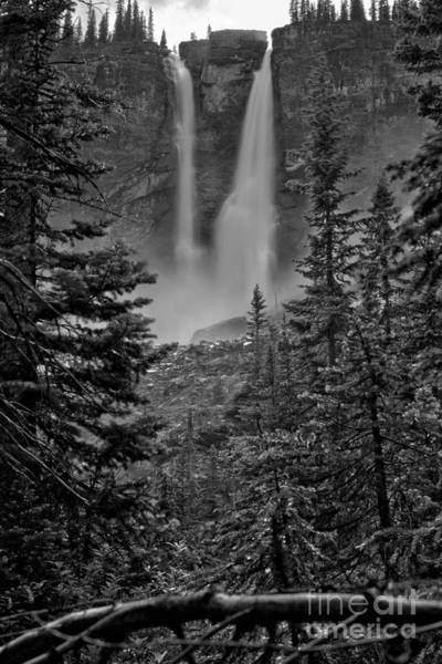 Photograph - Twin Falls Through The Trees Black And White by Adam Jewell
