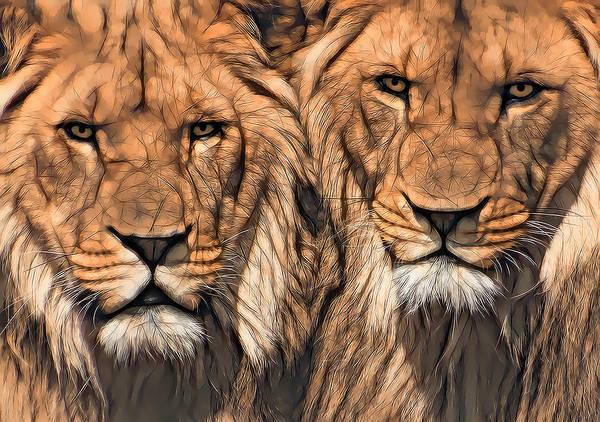 Wall Art - Digital Art - Twin Lions by Daniel Hagerman