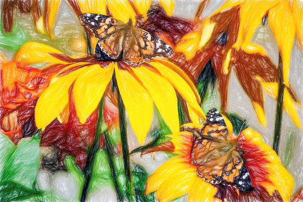 Twin Painted Lady Butterflies Pencil Art Print