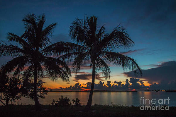 Photograph - Twin Palms Sunrise by Tom Claud