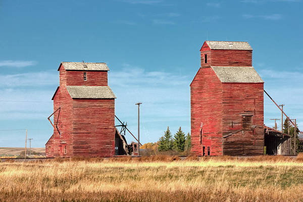 Wall Art - Photograph - Twin Reds by Todd Klassy