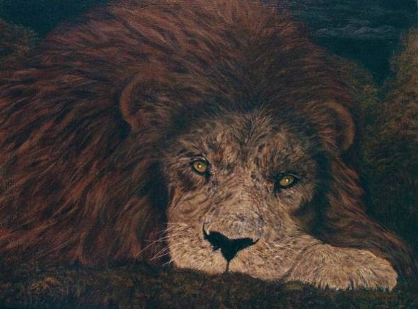 Wall Art - Painting - Two Cape Elephant Shrew And A Lion Too by HiAngelArts -