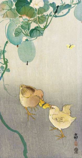 Wall Art - Painting - Two Chicks Competing For Butterflies - Digital Remastered Edition by Ohara Koson
