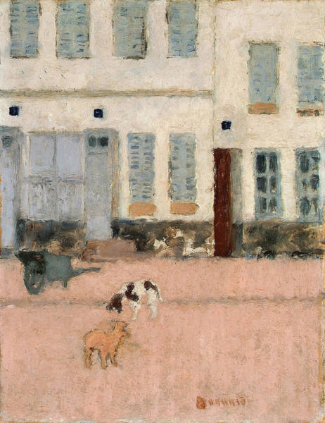 Wall Art - Painting - Two Dogs In A Deserted Street - Digital Remastered Edition by Pierre Bonnard