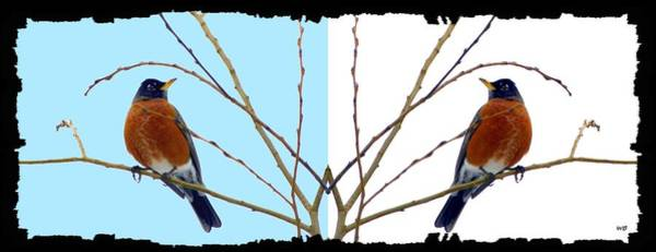 Wall Art - Digital Art - Two For One Robin by Will Borden