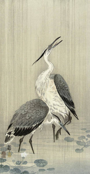 Wall Art - Painting - Two Herons In The Rain by Ohara Koson