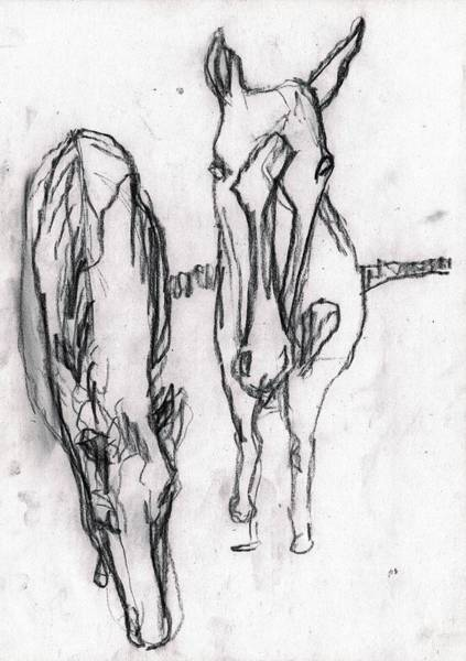Drawing - Two Horses by Artist Dot