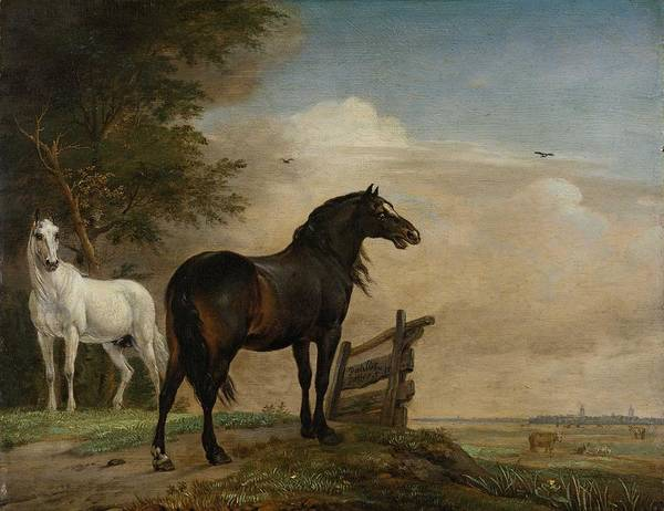 Wall Art - Painting - Two Horses In A Meadow Near A Gate  1649  Paulus Potter by Celestial Images