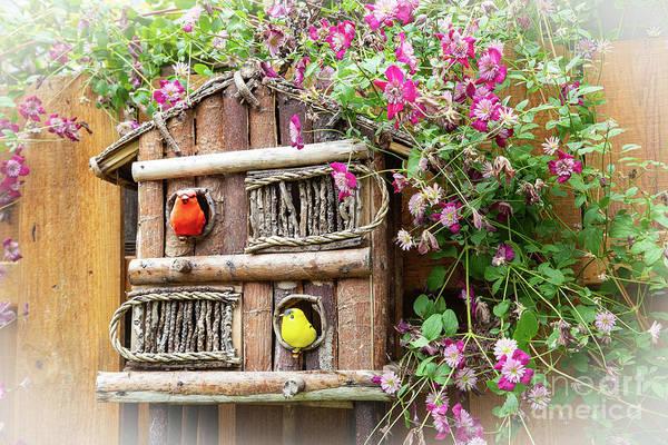 Photograph - Two Little Birdies by Marilyn Cornwell