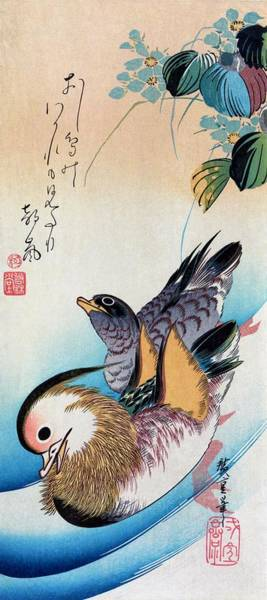 Wall Art - Painting - Two Mandarin Ducks by Utagawa Hiroshige