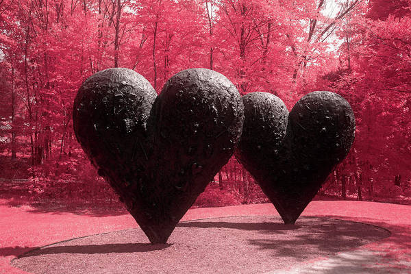 Photograph - Two Of Hearts by Brian Hale