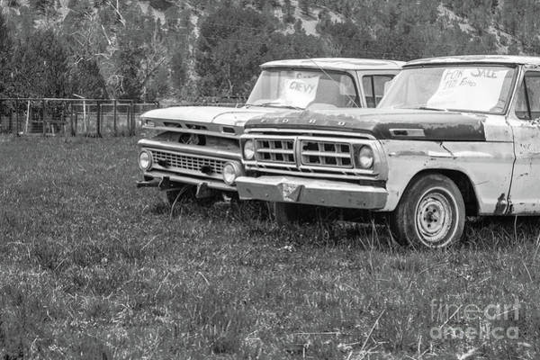 Photograph - Two Old Pickup Trucks Utah by Edward Fielding