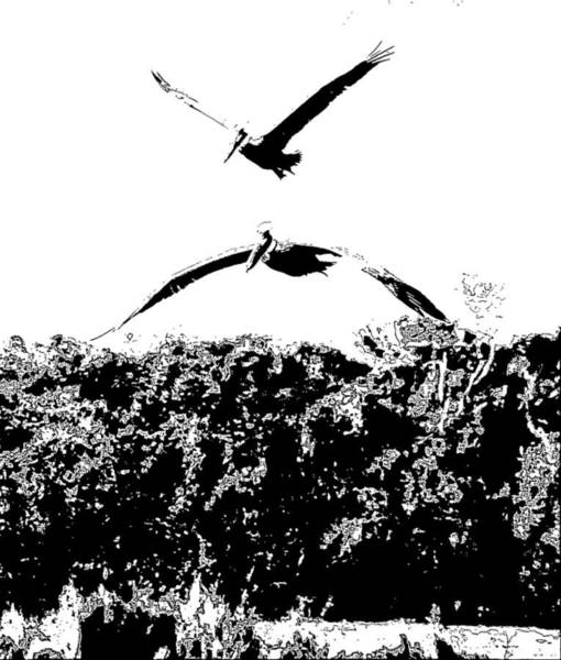 Pelican Island National Wildlife Refuge Wall Art - Photograph - Two Pelicans Flying Over Pea Island 8 by Cathy Lindsey
