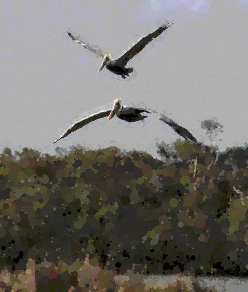 Pelican Island National Wildlife Refuge Wall Art - Photograph - Two Pelicans Flying Over Pea Island 9 by Cathy Lindsey
