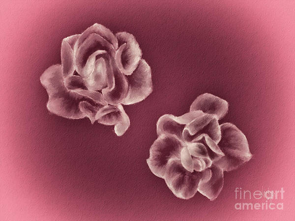Digital Art - Two Roses by Lois Bryan