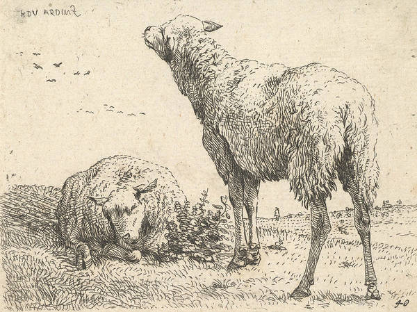 Relief - Two Sheep, One Shown Frontally In A Reclining Position by Karel Dujardin