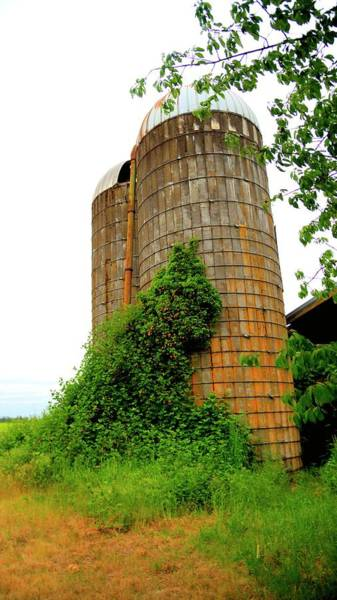 Photograph - Two Silos by Jerry Sodorff