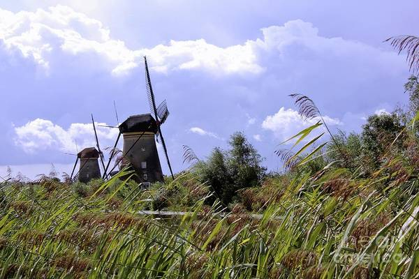 Photograph - Two Sisters At Kinderdijk by Aapshop