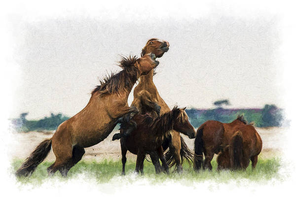 Photograph - Two Stallions Getting It On  Paintography by Dan Friend