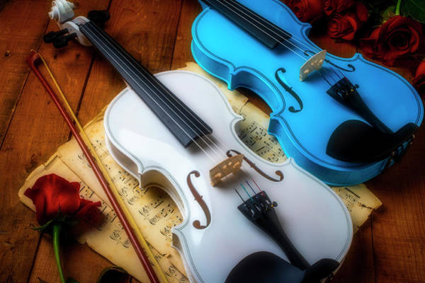 Wall Art - Photograph - Two Violins White And Blue by Garry Gay