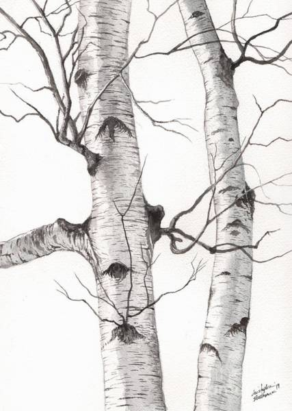 Painting - Two Wild Birch Trees In Watercolor by Christopher Shellhammer