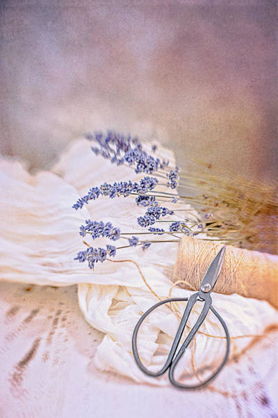Photograph - Tying Bundles Of Lavender by Jennifer Grossnickle