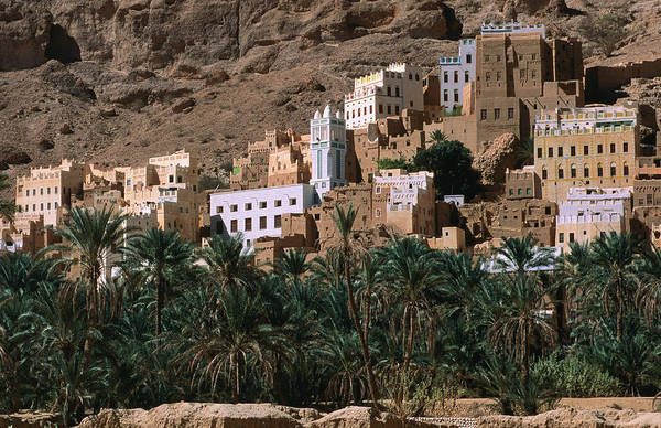 Dust Photograph - Typical Hadramawt Village With Date by Frances Linzee Gordon
