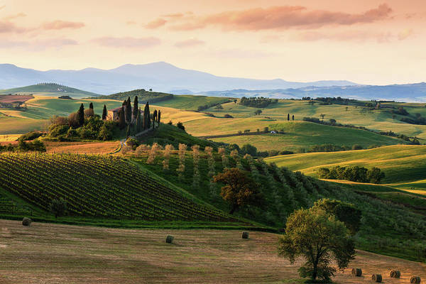 Pastel Drawing Photograph - Typical Landscape In The Tuscany by Manu10319