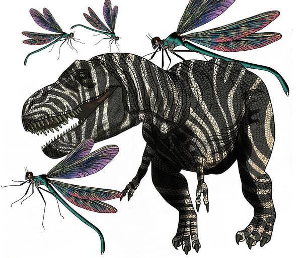 Wall Art - Drawing - Tyrannosaurus And Dragonflies by Joan Stratton