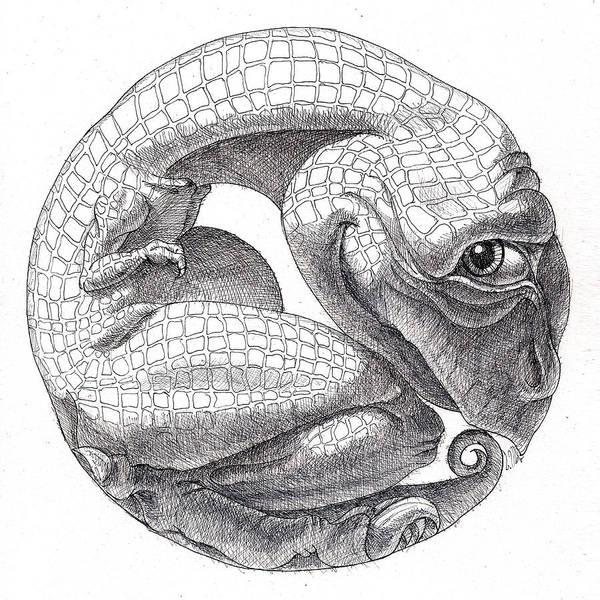Drawing - Tyrannosaurus Cub by Victor Molev