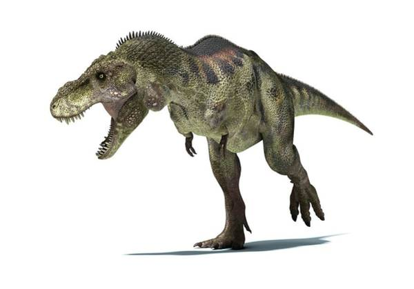 Prehistoric Era Wall Art - Digital Art - Tyrannosaurus Rex Dinosaur, Artwork by Leonello Calvetti