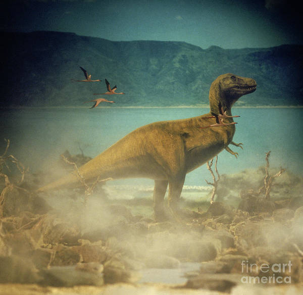 Photograph - Tyrannosaurus Rex by Warren Photographic