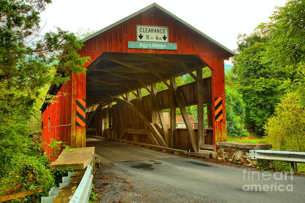 Photograph - Tyrone Township Covered Bridge by Adam Jewell