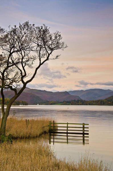 Fence Photograph - Ullswater Fence by John Ormerod