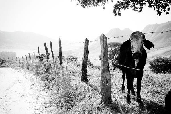 Minas Gerais Wall Art - Photograph - Um Mundo A Parte by Adriana Casellato