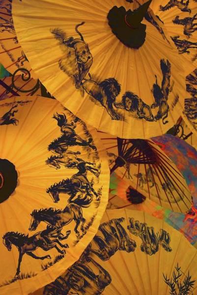 Chiang Mai Province Photograph - Umbrellas, Chiang Mai, Thailand by Dragos Cosmin Photos