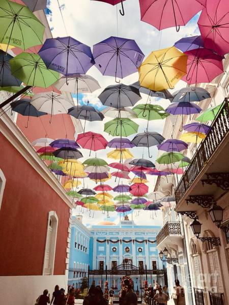 Photograph - Umbrellas Over La Fortaleza by The Art of Alice Terrill