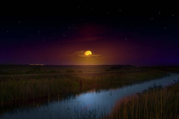 Wall Art - Photograph - Under A Sawgrass Moon by Mark Andrew Thomas
