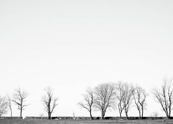 Photograph - Under A Winter Sky by Nancy De Flon