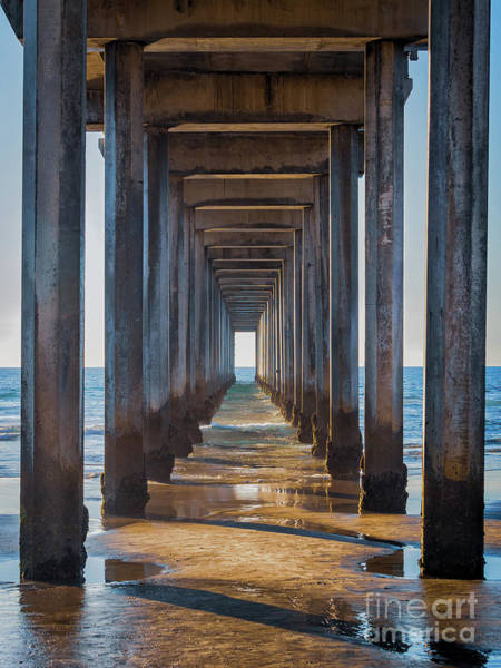 Photograph - Under Scripps Pier by Robin Zygelman