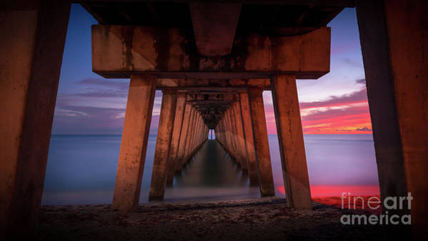 Wall Art - Photograph - Under Sharky's Pier In Venice, Florida by Liesl Walsh