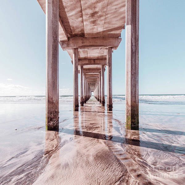 Wall Art - Photograph - Under The Boardwalk Scripps Pier San Diego Square by Edward Fielding