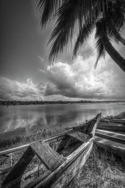 Photograph - Under The Palm Trees In Black And White by Debra and Dave Vanderlaan