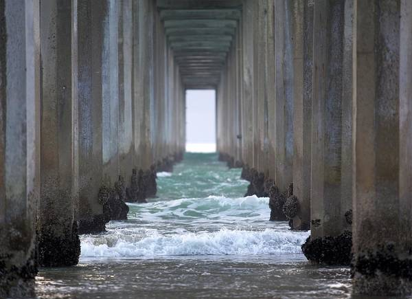 Wall Art - Photograph - Under The Pier In La Jolla California by 3bugsmom